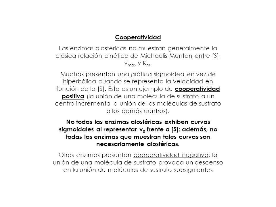 Cooperatividad Las enzimas alostéricas no muestran generalmente la clásica relación cinética de Michaelis-Menten entre [S], vmáx y Km.